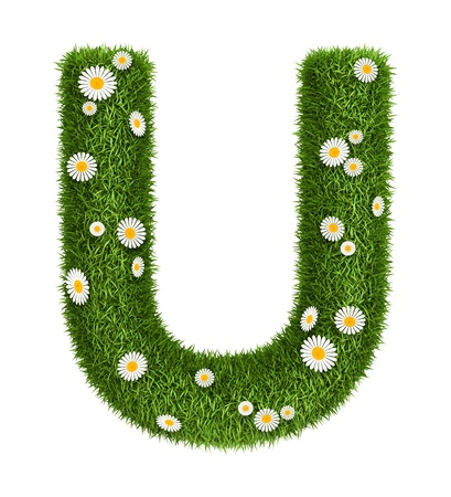 Letter U photo realistic grass font with flower camomile photo