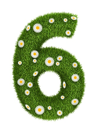 number 6: Number 6 photo realistic grass font with flower camomile Stock Photo