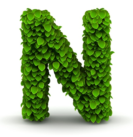 letter n: Leaves alphabet font letter N on white background