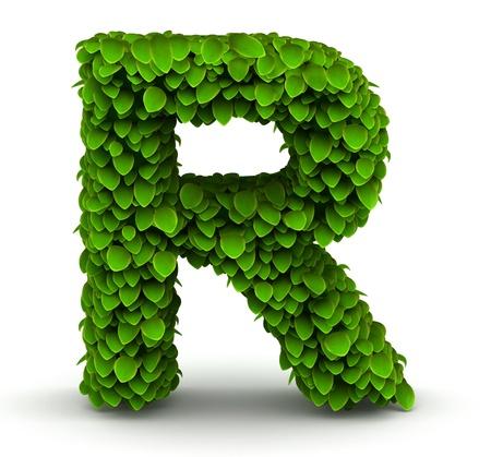 Feuilles alphabet police lettre R sur fond blanc Banque d'images - 21304696