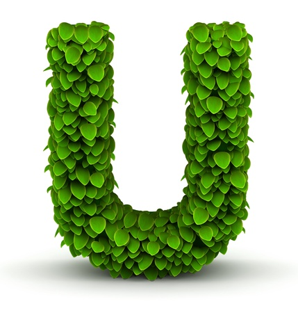 letter u: Leaves alphabet font letter U on white background Stock Photo
