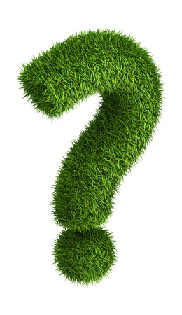health questions: 3D question mark  photo realistic isometric projection grass ecology theme on white