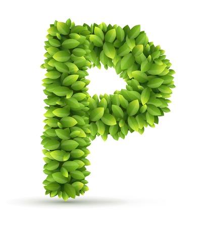 Letter P alphabet of green leaves on white background Vector