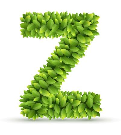 Letter Z alphabet of green leaves on white background Illustration
