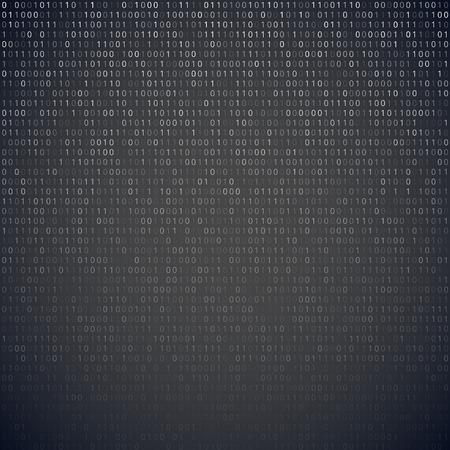 sistema operativo: C?o binario