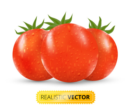 tomatoes: Vector illustration set of three red fresh tomatos Illustration
