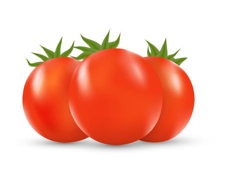 wet leaf: Vector illustration set of three red fresh tomatos Illustration