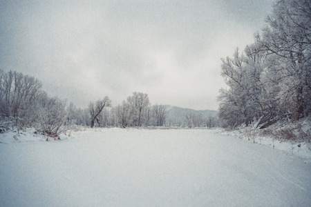the frozen water: Winter  forest and lake. Snow covered trees and frozen water Stock Photo