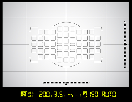 video camera viewfinder grid screen with AF dot, exposure and camera settings.