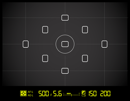 Photo camera viewfinder grid screen with AF dot, exposure and camera settings.