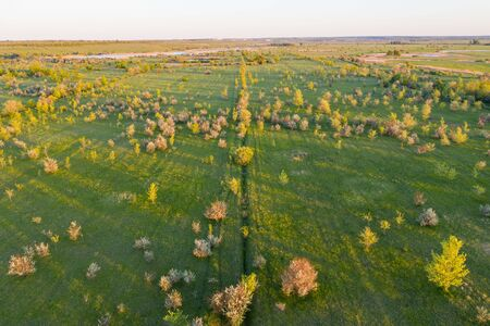Green country land view to grassland with trees, girt and lake