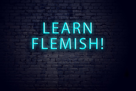 Brick wall and neon sign with inscription. Concept of learning flemish.