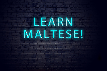 Brick wall and neon sign with inscription. Concept of learning maltese.