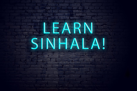 Brick wall and neon sign with inscription. Concept of learning sinhala.
