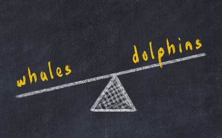 Chalk board sketch of scales. Concept of balance between dolphins and whales Stok Fotoğraf