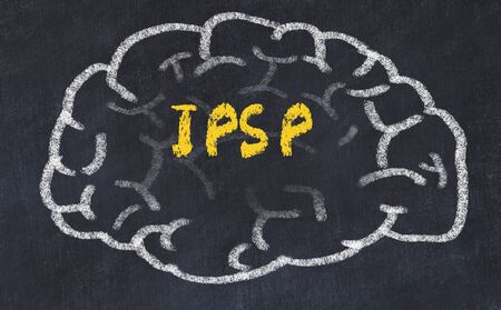 Drawing of human brain on chalkboard with inscription IPSP.