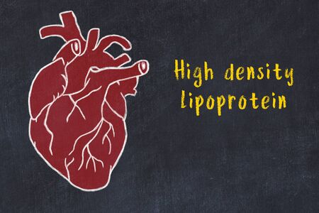 Chalk drawing of a human heart on black chalkboard and inscription High density lipoprotein 写真素材