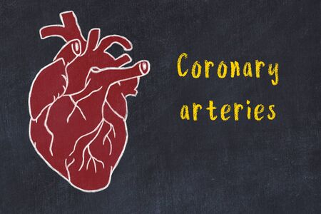 Learning cardio system concept. Chalk drawing of human heart on black chalkboard and inscription Coronary arteries