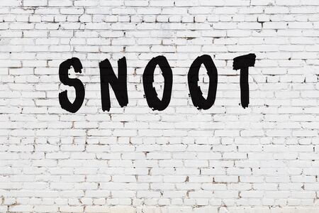 Word snoot written with black paint on white brick wall.