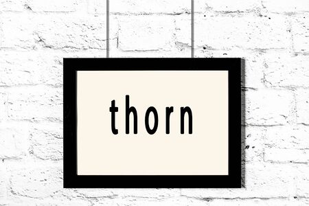 Black wooden frame with inscription thorn hanging on white brick wall