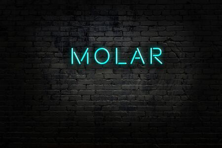 Neon sign with inscription molar against brick wall. Night view