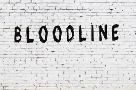 Word bloodline written with black paint on white brick wall.