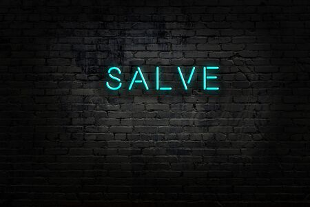 Neon sign with inscription salve against brick wall. Night view Reklamní fotografie