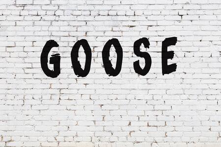 White brick wall with inscription goose handwritten with black paint Zdjęcie Seryjne