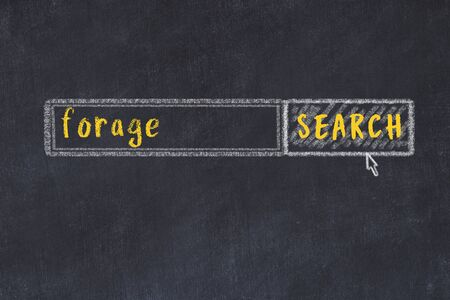 Drawing of search engine on black chalkboard. Concept of looking for forage