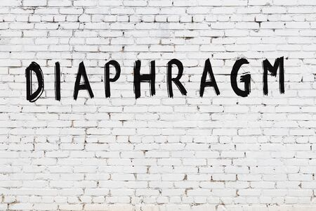 White brick wall with inscription diaphragm handwritten with black paint Stock Photo