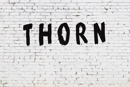 Word thorn written with black paint on white brick wall.