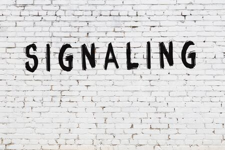 Word signaling written with black paint on white brick wall.