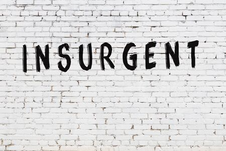 Word insurgent written with black paint on white brick wall.