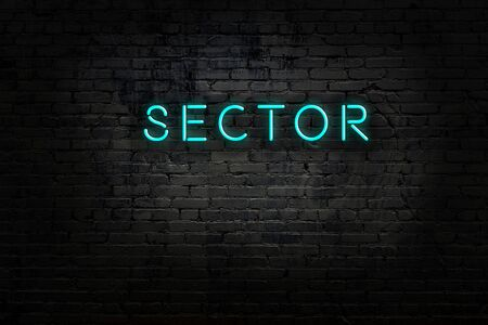 Night view of neon sign on brick wall with inscription sector
