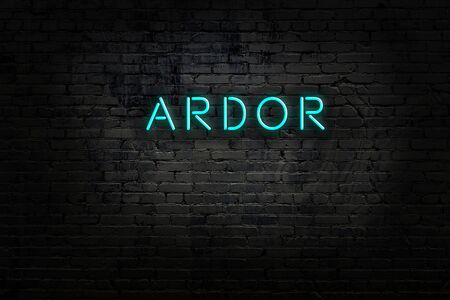 Night view of neon sign on brick wall with inscription ardor