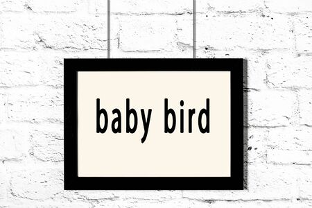 Black wooden frame with inscription baby bird hanging on white brick wall