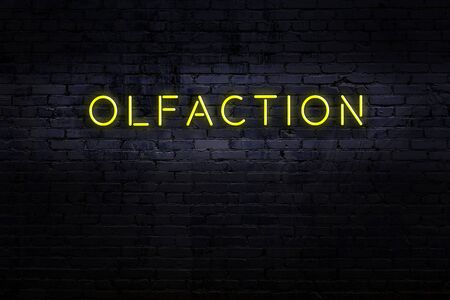 Neon sign with inscription olfaction against brick wall. Night view