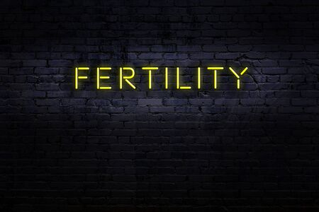 Neon sign with inscription fertility against brick wall. Night view