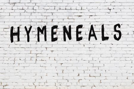 Word hymeneals written with black paint on white brick wall. Imagens