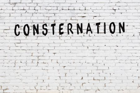 White brick wall with inscription consternation handwritten with black paint 版權商用圖片