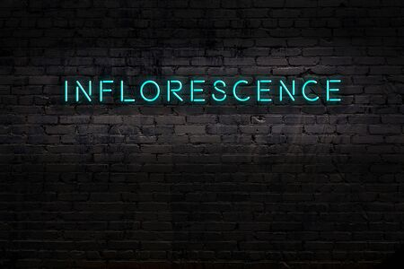 Neon sign on brick wall at night. Inscription inflorescence
