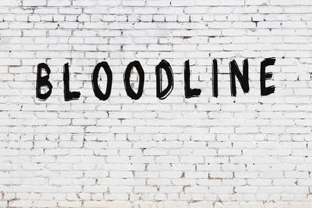 White brick wall with inscription bloodline handwritten with black paint