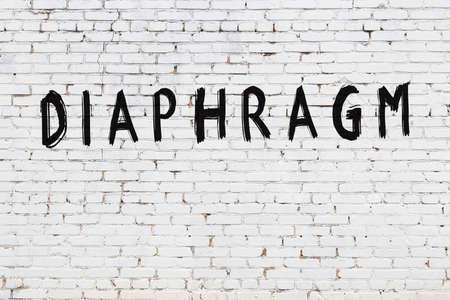 Inscription diaphragm written with black paint on white brick wall. Stock Photo