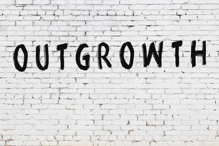 White brick wall with inscription outgrowth handwritten with black paint