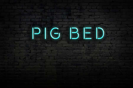 Neon sign on brick wall at night. Inscription pig bed 写真素材