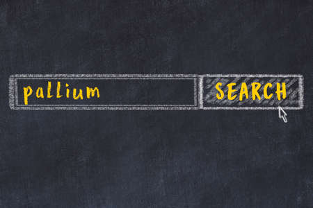 Concept of looking for pallium. Chalk drawing of search engine and inscription on wooden chalkboard