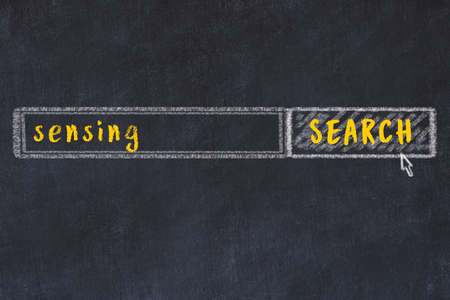 Concept of looking for sensing. Chalk drawing of search engine and inscription on wooden chalkboard Фото со стока