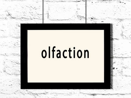 Black wooden frame with inscription olfaction hanging on white brick wall