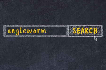 Concept of looking for angleworm. Chalk drawing of search engine and inscription on wooden chalkboard