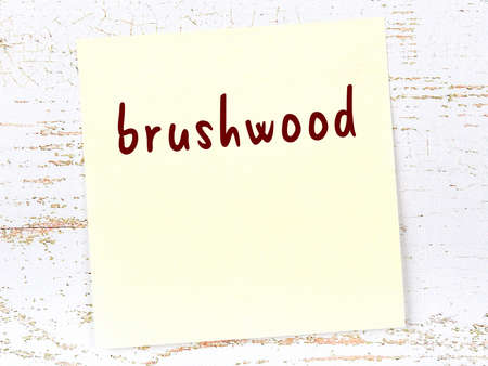 Concept of reminder about brushwood. Yellow sticky sheet of paper on wooden wall with inscription